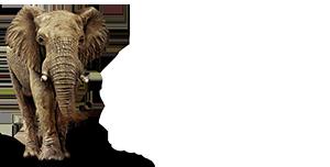 logo_gmaf_k2